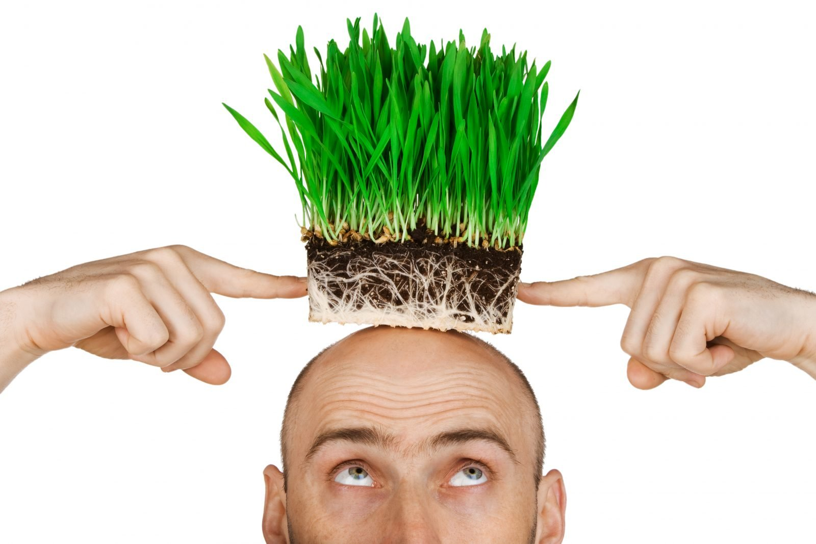 EVERYTHING YOU NEED TO KNOW ABOUT HAIR TRANSPLANT
