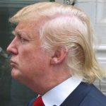 trump-hair-real-or-fake