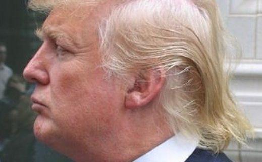 trump-hair-real-or-fake